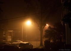 Petworth Fog (Bill Herndon) Tags: fog night washington districtofcolumbia flickr published olympus petworth e620 flickrwrherndon