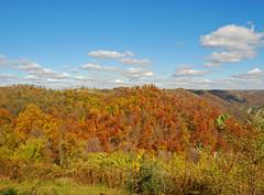 Kiedasch Point Park , Fall Landscape (thoeflich) Tags: november ohio fallcolors autumnleaves autumncolors ohioriver hannabal falllandscape autumnlandscape kiedaischpointpark