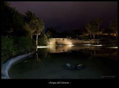 Parque del Calvario 07-12-2013 (Alberto Alrian) Tags: parque noche agua fuente nocturna estanque d200 estepona alrian