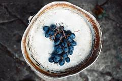 Гроздь винограда (Towy-Yowy) Tags: kodak ektar