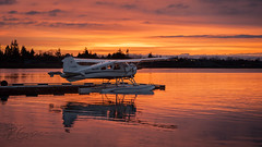 C-GOBC - Seair Seaplanes - DHC-2 Beaver (bcavpics) Tags: canada vancouver plane airplane britishcolumbia aircraft aviation beaver yvr seaplane floatplane dehavilland dhc2 bcpics cam9 cgobc seairseaplanes