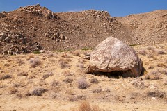 White Mountain City ACEC, Pictograph Boulder (darthjenni) Tags: california trip travel vacation rock stone landscape desert native indian great whitemountains basin american mojave petroglyph bishop rockart owensvalley pictograph inyonationalforest areaofcriticalenvironmentalconcern basinandrangeprovince