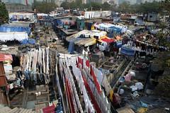 Wide shot of Mahalaxmi Dhobi Ghat (Daniel Incandela) Tags: city india asia clothes laundry bombay hanging mumbai drying ghat dhobi mahalaxmidhobighat