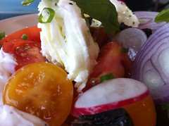 Tomato and mozarrella