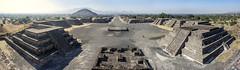 Beauty, magic and symmetry. Teotihuacan desde la Piramide de la Luna, Mexico. (pedro lastra) Tags: leica sony f4 3570mm a7r