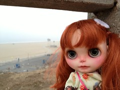Verne at Santa Monica beach