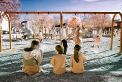 Swingset (-Dons) Tags: usa tree austin children texas unitedstates tx swing infrared swingset cantupanamericanrecreationcenter