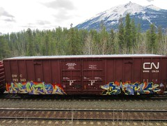 HAMER, BLACK (YardJock) Tags: railroad graffiti spraypaint boxcar piece freighttrain rollingstock benching paintedsteel boxcarart benchreport
