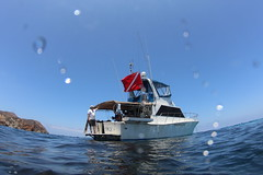 IMG_7042 (ScubaSchoolsofAmerica) Tags: scuba diving international schools rebreather ssa scubaschoolsofamericadivingadventures