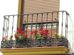 Old Moorish town - Calle Arminan, Ronda - balcony with red flowers (ell brown) Tags: flowers flower spain blind balcony espana ronda shutter balconies blinds andalusia malaga serraníaderonda southofspain callearminan oldmoorishtown