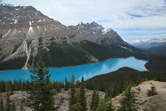 Peyto Lake,Banff National Park,Alberta,Canada (kukkaibkk) Tags: canada banff autofocus peyto lake landscape mountain travel nature