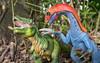 Please scratch my back (Reiterlied) Tags: d5200 dslr dino dinosaur germany hamburg legography nikon photography reiterlied schleich sipgoeshamburg2016 stuckinplastic trex therizinosaurus toy tyrannosaur