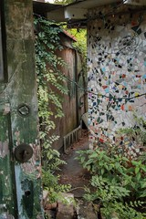 """livin' the lush life (listening to """"first - return to tackyland"""", cold war kids) (jeneksmith) Tags: worn old summertime summer clutter messy mosaic layers doorway door overgrowth vegetation plants abitamysteryhouse abitasprings louisiana canon"""