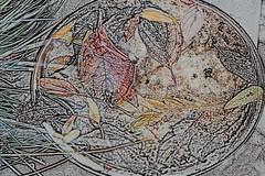 sketch of autumn.... (Elly Snel) Tags: ansh scavenger20 sketch schets bladeren leaves edited bewerkt