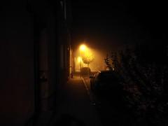 night (Bernie Wick) Tags: night street environment streetlight
