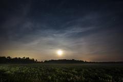 Moon Lit Mist (Matt Molloy) Tags: mattmolloy photography night sky stars moon cirrus clouds mist green grass field dandelions trees violet ontario canada landscape lovelife