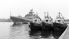 """Admiral Essen"" frigate guards three tugs (Suicidal_zombie) Tags: russia russie saintpetersburg stpetersburg leutenantschmidt embankment neva bigneva river water morning moored tug tugs frigate guard"