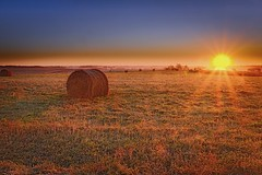 Good Morning (wdterp) Tags: morning bales sun rays sunrise farm field rural country countryside