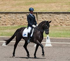 161023_Aust_D_Champs_Sun_Med_4.2_6149.jpg (FranzVenhaus) Tags: athletes dressage australia siec equestrian riders horses performance event competition nsw sydney aus