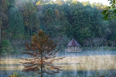 Misty morning (JPShen) Tags: pavilion tree morning misty lake fog reflection garden autumn landscape