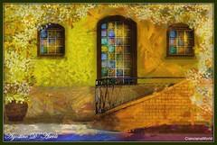 Composizione con tre finestre - Novembre-2016 (agostinodascoli) Tags: fiori finestre art agostinodascoli nikon nikkor cianciana sicilia photoshop photopainting digitalart digitalpainting digitalgraph colore fullcolor impressionismo vangogh