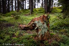 20160923_7010_Kristberg (Rob_Boon) Tags: kristberg montafon oostenrijk silbertal vorarlberg austria robboon landscape