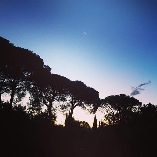 Il mattino ha l'oro in cielo #montecatiniterme #massaecozzile #tuscany