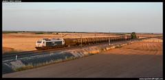 Mercancas variado en Villacaas (javier-lopez) Tags: ffcc railway train tren trenes adif renfe mercancas qumico benceno xido propileno 333 3333 prima zacs vtg zaes zas tramesa transfesa tarragonaclasificacin constant tarragonapuerto elmorell puertollano puertollanorefinera villacaas 08072016