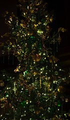Gold and Green Tree (pjpink) Tags: tree christmas christmassy christmasy christmastree decorations ornament festive longwoodgardens pa pennsylvania november 2016 winter pjpink