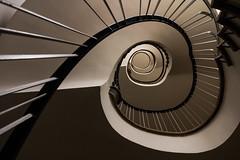 Hamburg stairs (michael_hamburg69) Tags: hamburg germany deutschland treppe stairs stairwell stairway staircase spiral wendeltreppe wendel helix treppenhaustreppenauge escalier geländer handlauf stufen stufe escala escalera scala 台阶 [臺階]táijiē jiētī 阶梯 [階梯]подниматься по лестнице крутая лестница schlosstrasse12 wandsbek