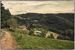 Kinzigtal im Schwarzwald 2 (Babu l'binchou) Tags: allemagne deutchland schwarzwald kinzigtal bollenbach nikond80 nikonaf18200vr colorefexpro4