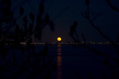 supermoon montreal5 (Lou Musacchio) Tags: supermoon moon astronomy november2016supermoon montreal quebec canada
