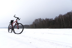 Along the edge of the forest (aaBocharov) Tags: winter road forest bike travel snow