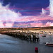 Amble Harbour Panorama – Northumberland