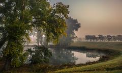 Autumn lifts it's curtains (Ingeborg Ruyken) Tags: 2016 500pxs empel herfst autumn dawn dijk dropbox dyke fall flickr fog mist morning natuurfotografie ochtend october oktober pond water wiel