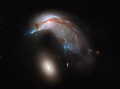 In 2013, Hubble Space Telescope captured this beautiful phenomenon. This photograph is generally called the The Penguin and its Egg! In reality, these are two galaxies 400 million light-years away from Earth in the southern constellation Hydra. The blue s (beautyaboveus) Tags: hubble space telescope penguin egg galaxy goliath david universe nebula earth cute pics animals animal antartica photo photos image images picture pictures pic fact facts interesting amazing