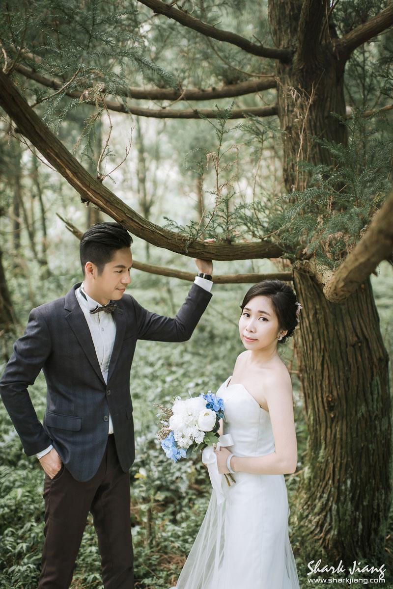DS wedding,婚紗,婚攝鯊魚,自助婚紗,自主婚紗,婚紗攝影推薦
