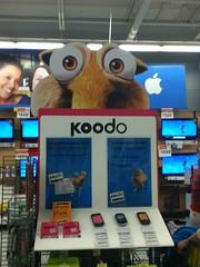 Scrat Koodo (splinky9000) Tags: pembroke ontario wal mart scrat squirrel ice age banner koodo mobile phones