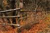 Corner (arbyreed) Tags: arbyreed fall fence fenceline fencecorner fencedfriday hff hobblecreekcanyon utahcountyutah leaves deadleaves