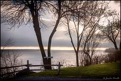 Une éclaircie sur le fleuve / A thinning on the river (Jeanluc Verville) Tags: arbres trees fleuve river
