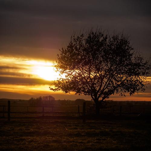 Sonnenuntergang im Fläming 4