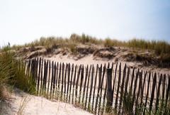 (simon meisinger) Tags: leica holland beach netherlands rangefinder m8 voigtlnder cv noordwijk 3514