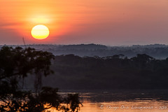 mais um sol (Thiago Orsi) Tags: morning sun sol rio sunrise dawn amazon amarelo alvorada amanhecer madrugada roraima nascerdosol amazonia boavista riobranco janeladecasa florestadegaleria