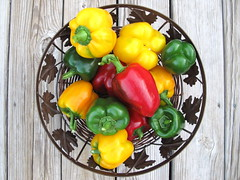 Autumn Garden Colors (OakleyOriginals) Tags: autumn red green yellow golden healthy colorful bell harvest fresh peppers organic ripe bellpeppers