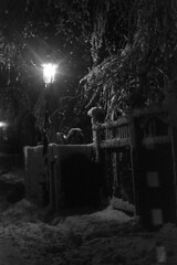 020569 11 (ndpa / s. lundeen, archivist) Tags: winter light blackandwhite bw snow storm 1969 film lamp monochrome boston night 35mm fence ma blackwhite massachusetts branches nick snowstorm nighttime lamppost 1960s february snowfall blizzard beaconhill snowcovered winterstorm dewolf heavysnow mtvernonsquare bigsnow coveredinsnow recordsnowfall recordsnow nickdewolf photographbynickdewolf