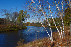 AuSable River (jameskirchner15) Tags: fall outdoors michigan scenic ausableriver michiganoutdoors scenicmichigan northeastmichigan
