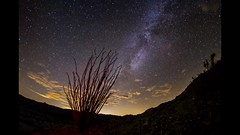 Time lapse with Milky Way, Venus, ocotillo, and clouds in the Anza-Borrego Desert (slworking2) Tags: sky night venus desert anzaborrego ocotillo milkyway vialactea