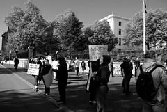 Million Mask March (Boston)086 2013_11_04 235517 (marcnoccil) Tags: boston sex naked anonymous massachusettsstatehouse millionmaskmarch anonymousmillionmaskmarch