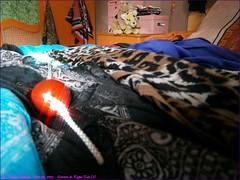 029TC_Scarves_&_Ropes_Fun_(1)_Nov03, 2013_2560x1920_B030543_sizedFlickR (terence14141414) Tags: scarf silk bondage rope wrist foulard soie nylonrope esarp scarvesropesfun
