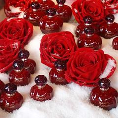 Bon cadeau ou cadeau empoisonné ? ** (Titole) Tags: red white perfume squareformat shopwindow vitrine flacon unanimouswinner friendlychallenges thechallengefactory titole nicolefaton